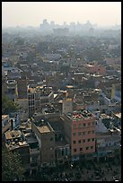 View of Old Delhi from above with high rise skyline in back. New Delhi, India ( color)
