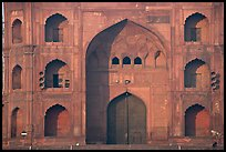 Detail of Jama Masjid East Gate. New Delhi, India