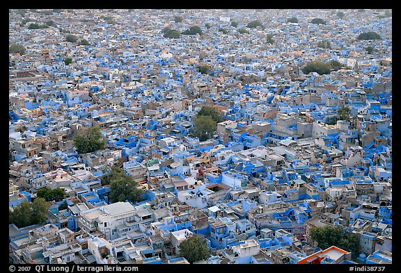 Whitewashed indigo tinted houses seen from above at dusk. Jodhpur, Rajasthan, India