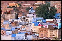 Old quarter houses at dawn. Jodhpur, Rajasthan, India