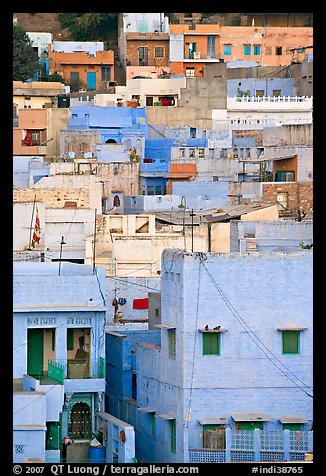 Old town houses with various shades of indigo. Jodhpur, Rajasthan, India (color)