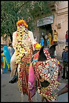 Flower-covered groom riding on horse. Jodhpur, Rajasthan, India