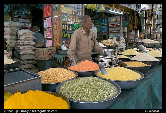 Man in front of grain and spice store, Sardar market. Jodhpur, Rajasthan, India (color)