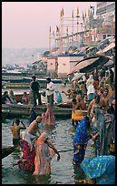 Women standing in Ganga River at sunrise, Dasaswamedh Ghat. Varanasi, Uttar Pradesh, India (color)