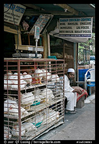 Chicken vendor, Colaba Market. Mumbai, Maharashtra, India