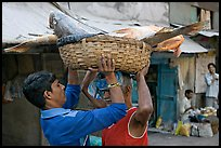 Men unloading basket with huge fish from head, Colaba Market. Mumbai, Maharashtra, India (color)