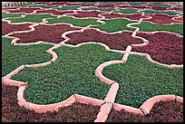 Geometric patterns in Anguri Bagh garden, Agra Fort. Agra, Uttar Pradesh, India (color)