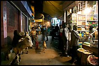 Sacred cow and street by night, Taj Ganj. Agra, Uttar Pradesh, India ( color)