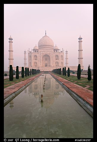 Tomb  reflected in basin, sunrise, Taj Mahal. Agra, Uttar Pradesh, India