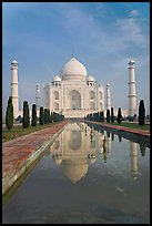 Taj Mahal reflected in basin, morning. Agra, Uttar Pradesh, India (color)