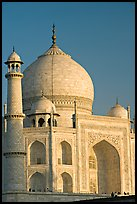 Taj Mahal, late afternoon. Agra, Uttar Pradesh, India ( color)