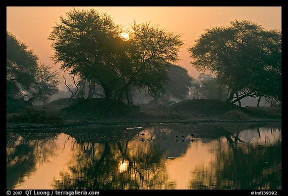 Pond at sunrise, Keoladeo Ghana National Park. Bharatpur, Rajasthan, India (color)