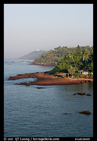 Coastline with palm trees, Dona Paula. Goa, India (color)
