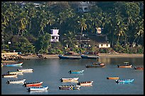 Boats, and palm-tree covered hillside, Dona Paula. Goa, India