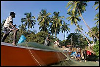 Men mending fishing net with palm trees in background. Goa, India ( color)