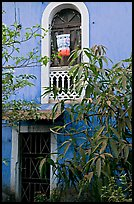 Yard and blue facade, Panaji. Goa, India ( color)