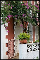 House facade with flowers, Panaji. Goa, India (color)