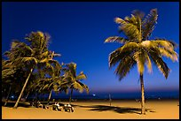 People sitting on bench below palm trees at twilight, Miramar Beach. Goa, India ( color)