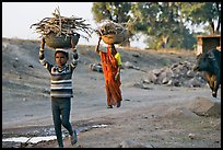 Villagers gathering wood. Khajuraho, Madhya Pradesh, India ( color)
