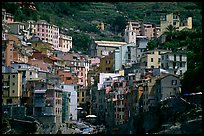 Jumble of houses, Riomaggiore. Cinque Terre, Liguria, Italy (color)