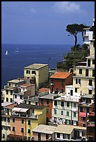 Houses built on the sides of a steep ravine overlook the Mediterranean, Riomaggiore. Cinque Terre, Liguria, Italy