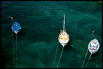 Three small boats in emerald waters, Riomaggiore. Cinque Terre, Liguria, Italy (color)