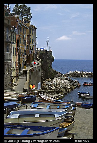 Fishing boats, harbor, and Mediterranean Sea, Riomaggiore. Cinque Terre, Liguria, Italy (color)