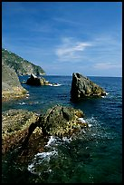 Mediterranean coastline and rocks near Manarola. Cinque Terre, Liguria, Italy (color)