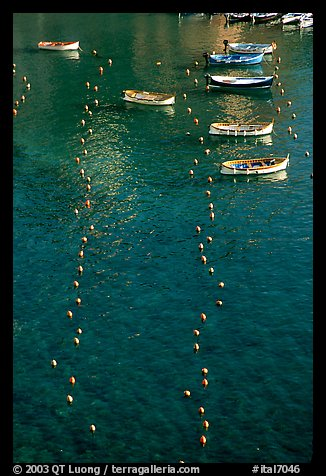 Buoy lines and fishing boats seen from above, Vernazza. Cinque Terre, Liguria, Italy
