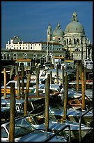 Water taxis and Santa Maria della Salute church, early morning. Venice, Veneto, Italy