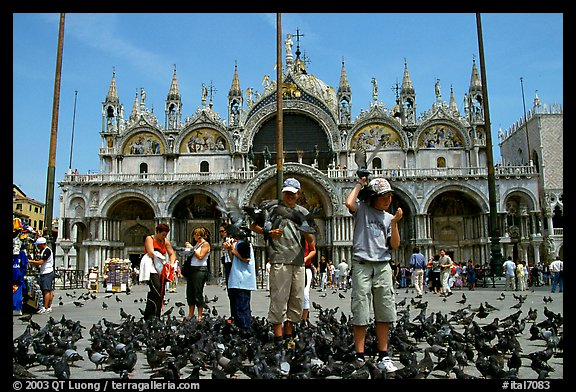Children feeding flock of pigeon, in front of the Basilica San Marco, mid-day. Venice, Veneto, Italy (color)