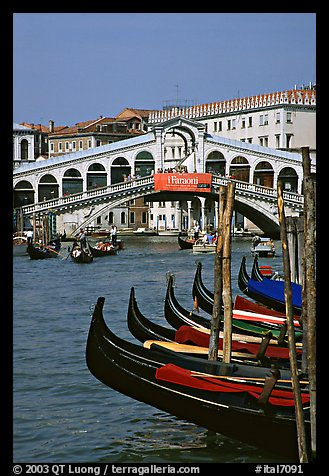 Gondolas and Rialto Bridge. Venice, Veneto, Italy (color)