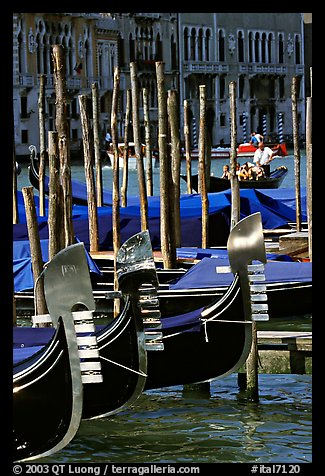 Gondolas prows, with their characteristic ferri. Venice, Veneto, Italy (color)