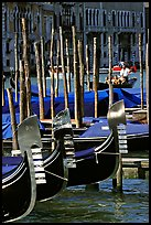 Gondolas prows, with their characteristic ferri. Venice, Veneto, Italy
