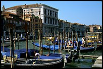 Parked gondolas on the the Grand Canal. Venice, Veneto, Italy