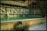 15th century Fonte Gaia (Gay Fountain) on Il Campo. Siena, Tuscany, Italy ( color)