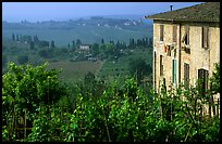 Gardens and countryside on the periphery of the town. San Gimignano, Tuscany, Italy