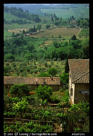 Gardens and contryside  on the periphery of the town. San Gimignano, Tuscany, Italy (color)