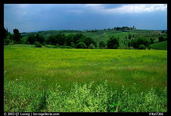 Countryside. Tuscany, Italy (color)