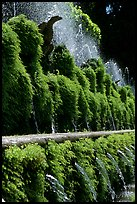 Fountains in the garden of Villa d'Este. Tivoli, Lazio, Italy (color)