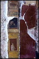Detail on a wall of Villa Vettii. Pompeii, Campania, Italy ( color)