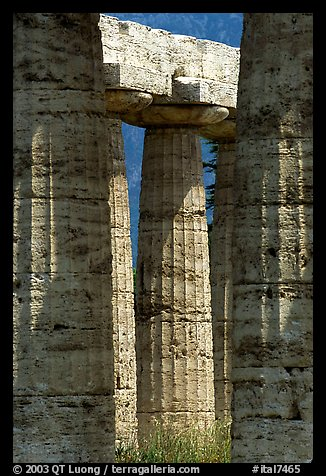 Columns of Temple of Neptune in Doric style. Campania, Italy (color)