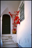 Door, red flowers, white walls, Positano. Amalfi Coast, Campania, Italy