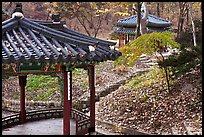 Pavilions in autumn, Changdeok Palace gardens. Seoul, South Korea