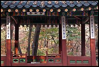 Gazebo in autumn, Ongnyucheong, Changdeokgung gardens,. Seoul, South Korea (color)