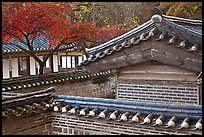 Wall and rooftop details, Yeongyeong-dang, Changdeok Palace. Seoul, South Korea (color)