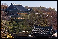 Changdeokgung Palace complex. Seoul, South Korea