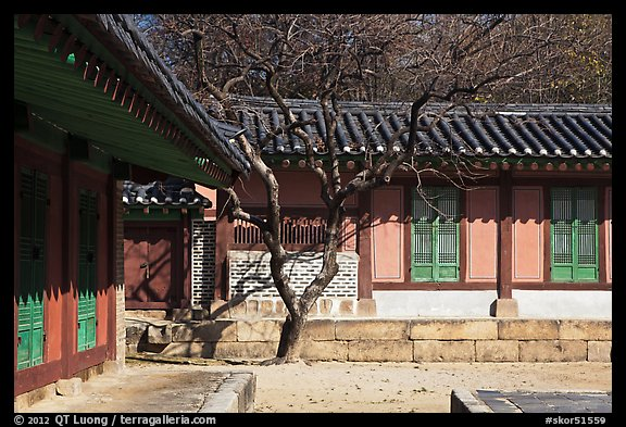 Jeongsa-cheong, Jongmyo royal ancestral shrine. Seoul, South Korea (color)