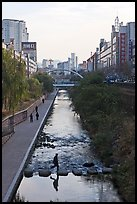 Man crossing Cheonggye stream. Seoul, South Korea (color)