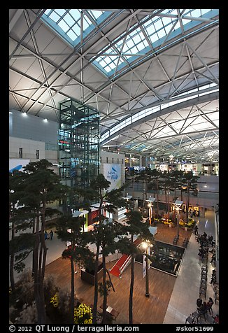 Trees inside Incheon international main terminal. South Korea (color)